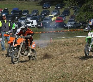 Wiesencross 2008