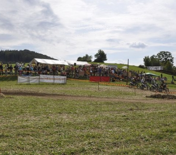 Wiesencross 2011